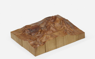 Maya Lin, Topographical Puzzle