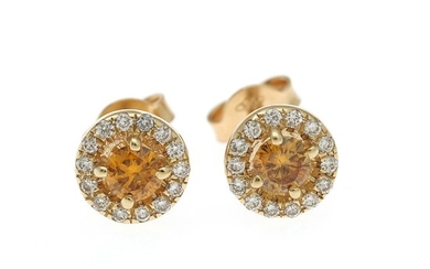 A pair of diamond ear studs each set with a yellow diamond, totalling app. 0.34 ct. encircled by numerous diamonds, mounted in 14k gold. (2)