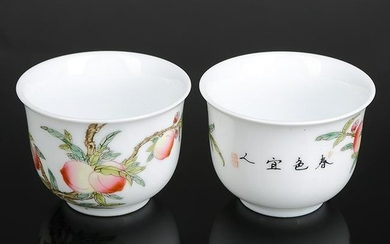 Pair of Chinese Famille Rose Porcelain Cups