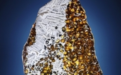 Deep Impact: Martian, Lunar and other Rare Meteorites