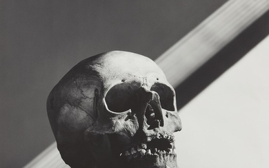 Robert Mapplethorpe, Skull