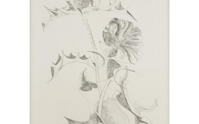 LEONARD BASKIN (american, 1922-2000) FLORAL 1970, pencil signed and...