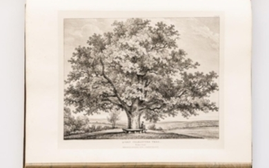 Burgess, Henry W. (1739-1839) Eidodendron, Views of the General Character & Appearance of Trees, Foreign & Indigenous, Connected with P