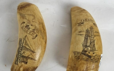 """Two Scrimshaw Tooth Carvings - """"Boxer"""", """"Argus"""""""