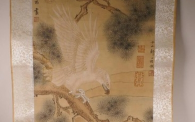 A Chinese watercolour scroll depicting an eagle on a cypress...