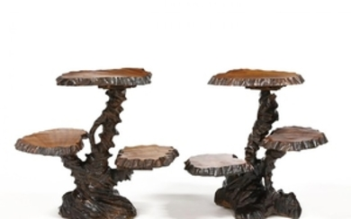 A Near Pair of Chinese Root Tables