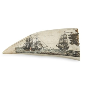Large polychrome scrimshaw whale's tooth 20th century Decorated with...