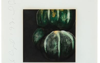 Donald Sultan - Donald Sultan: Squash (from Fruits and Flowers)