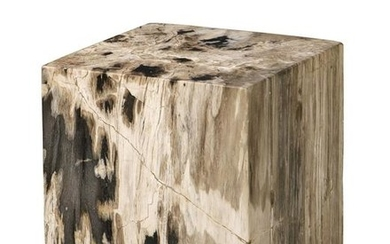 A petrified wood low table
