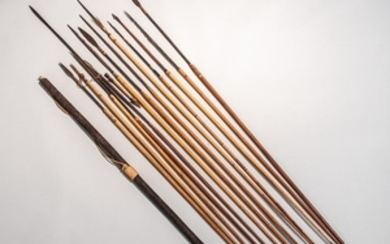 Thirteen South American Arrows and a Bow